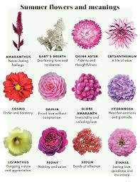 The Meaning of Flowers by Urban Botanicals