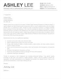 Unique Cover Letters Examples Best Letter Sample Cover Letter Word