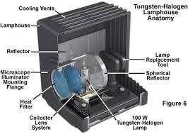 zeiss microscopy cus tungsten halogen ls