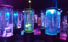 sea aquarium discount tickets carlsbad california
