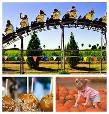 Pumpkin Patch Power Rd Mesa Az by Harvest Happenings Fall Events In Mesa Arizona
