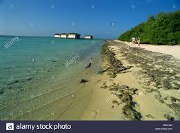 100 Reethirah Reethi Rah Maldive Islands Indian Ocean Stock Photo 20516947 Alamy