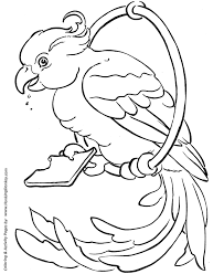 Pet Bird Coloring Pages