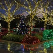 1 Holiday Lights In The Gardens