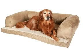 Kirkland Dog Beds by Kirkland Dog Sofa Bed U2013 Restate Co