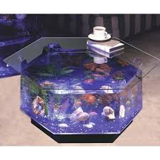 Lava Lamp Fish Tank Walmart by 91 Best Cool Fish Tanks Images On Pinterest Aquarium Fish Fish