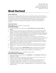Career Objective To Build Simple Web Solutions Complex Business Problems With General For Resume Examples And Summary As Senior Developer