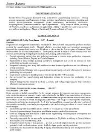 Resume Example Exex1a Summary