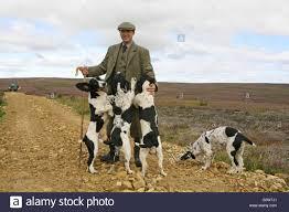 100 Gamekeepers Gamekeeper And Dogs Stock Photos Gamekeeper And Dogs Stock Images