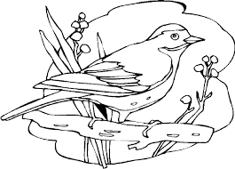 Yellow Wagtail Coloring Page