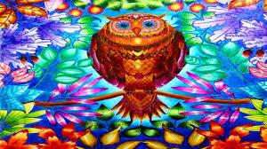 Secret Garden Coloring Book Owl