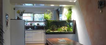 küche mit aquarium fish reps aquarienbau und terrarienbau