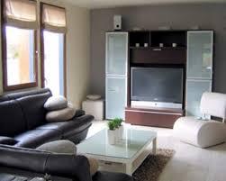 Tv Room Decorating Ideas Decor Picturesque Design 9 Small Interior