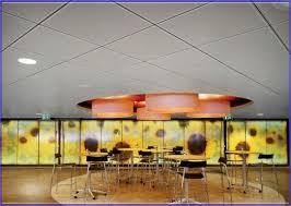 Celotex Ceiling Tiles Asbestos by Celotex Ceiling Tiles