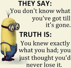 Funny Minions Quotes 133 More