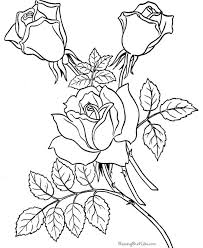 Image Detail For Roses Coloring Page Three Flowers Flower