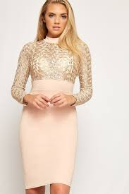 avery long sleeve lace mesh turtleneck bodycon dress