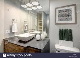 luxuriöses badezimmer mit grauen eitelkeit kabinett und