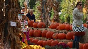Pumpkin Patch Arthur Il by Pumpkin Harvest Festival At Stonycreek Farm In Noblesville