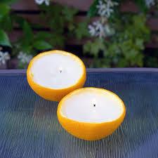 best 25 citronella ideas on garden lighting
