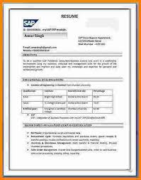 Cv Format Pdf Indian Styleresume Sample India Sap2bsd2bresume2bformat