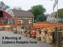 Halloween Express Milwaukee Pumpkin by Header3 Jpg