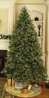 5ft Pre Lit Christmas Tree Homebase by Live Christmas Trees Potted Christmas Lights Decoration
