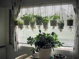 Rustic Dining Room Design With Hanging From Ceiling Indoor Herb Garden Planter Pots Beside Window White Blinds Ideas