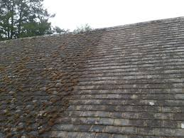 tile best clean roof tiles home design awesome lovely with clean