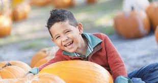 Denver Downs Pumpkin Patch Hours by Let The Fall Fun Begin