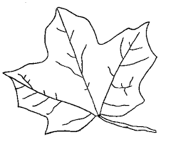 Fall Leaves Color Pages 16 Leaf Coloring Page