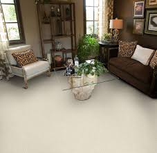 Par Rating Carpet by Dixie Home Broadloom Carpet Caress
