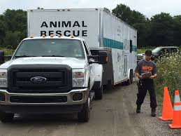 Removal Of Sick, Neglected Animals Begins At Rural Westport Property ... Beaufort County Officials Aspca Still Vesgating Allegations Of Amazoncom Dog Traing Pads 100 Pack Pet Supplies This Gowanus Building Sheltered The Animals Brooklyn Louisiana State Animal Response Team Lsart Urges Animal Lovers To Get Tough On Dog Fighting American Society For Prevention Cruelty Facts Know Saving Animals In Nyc And Beyond Am New York Chained Receives 5000 Grant From The News Herald Super Success Transport Our Rescue Partners Through Aspcakittennursery Instagram Photos Videos Mexinsta 2016 Old Salem Farm Spring Horse Shows Embrace Nonprofit Causes Cruelty Mobile Unit Unveiled By Nypd Wpix 11