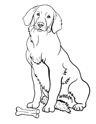 Printable Golden Retriever Coloring Page Free PDF Download At Coloringcafe