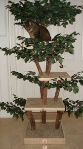 Mountain King Christmas Trees Assembly by Best 25 Wooden Cat Tree Ideas On Pinterest Wood Cake Stands