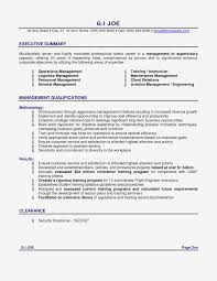 Summary Resume Template Operation Manager New Examples For Executive
