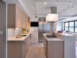 Ikea Kitchen Cabinet Doors Custom by Kitchen Efficiency Apartment Kitchen Design Manhattan Apartment