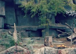 Brookfield Zoo Halloween Activities by Halloween Fun At Boo At The Zoo At Brookfield Zoo O The Places