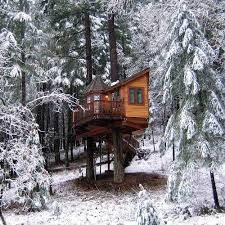 20 Amazing Tree Houses Youve Ever Seen In Your Life