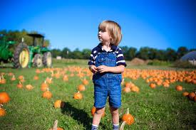 Pumpkin Patch Cincinnati by Cincinnati Parent U0027s Fall Festival Awards U2013 Cincinnati Parent Magazine