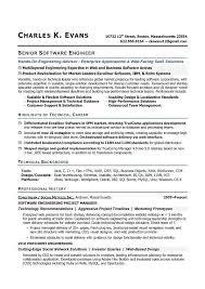 Vp Engineering Resume Sample File Letters Resource