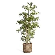 künstlicher bambus günstig kaufen kaufland de