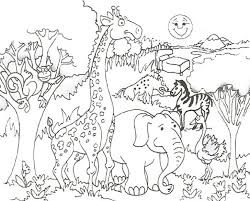 Cute Baby Animals Coloring Pages Wild Animal Pics Of