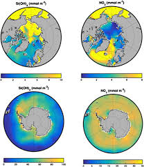 100 Wunderground Oslo Advection In Polar And Subpolar Environments Impacts On