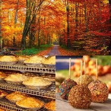Best Apple Hill Pumpkin Patch by Apple Hill Applehill Twitter