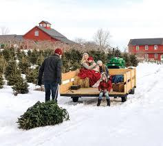 Rockefeller Center Christmas Tree Fun Facts by New England Christmas Tree 101 Yankee Magazine