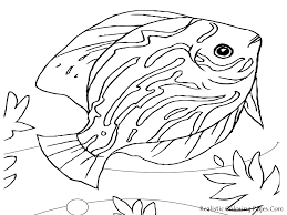 Sea Animals Coloring Pages Printable 1 Free