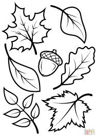 Simple Fall Foliage Coloring Pages Leaves And Acorn Page Free