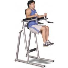 Abs Roman Chair Knee Raises by Inflight Vertical Knee Raise Dip Vkr Fitness Direct
