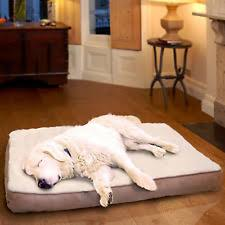 Extra Dog Bed